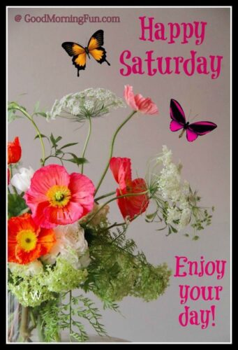 Happy Saturday - Enjoy your day