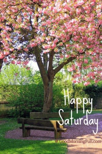 Happy Saturday! Go for a walk and breathe in the fresh air