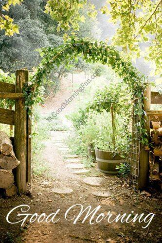 Good-Morning Arch