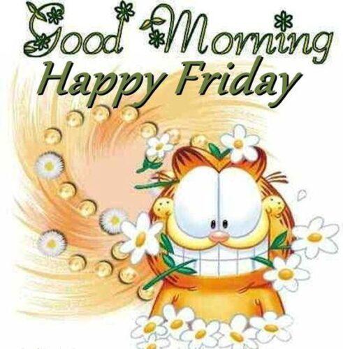 Good Morning   Happy Friday