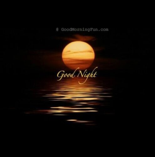 Good Night Beautiful Moon Pic