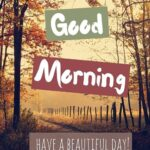 Good Morning - Have a Beautiful Day Quotes