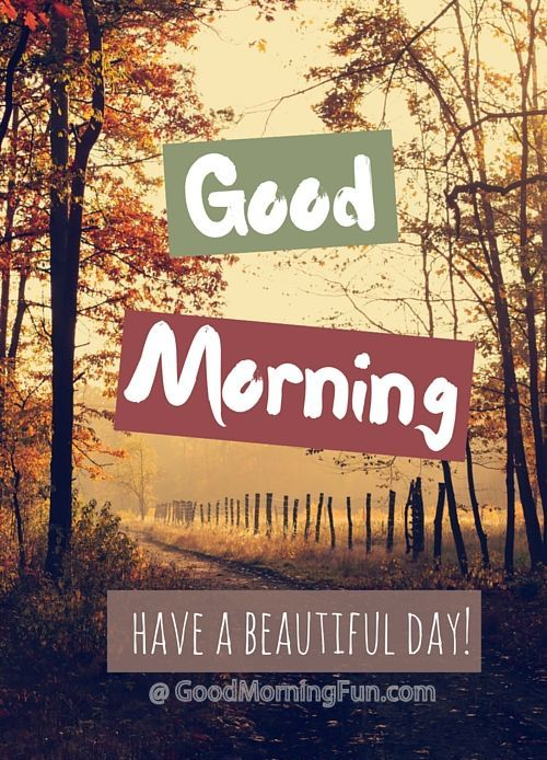 Good Morning - Have a Beautiful Day