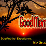 Good Morning - Another day another experience. Be grateful.