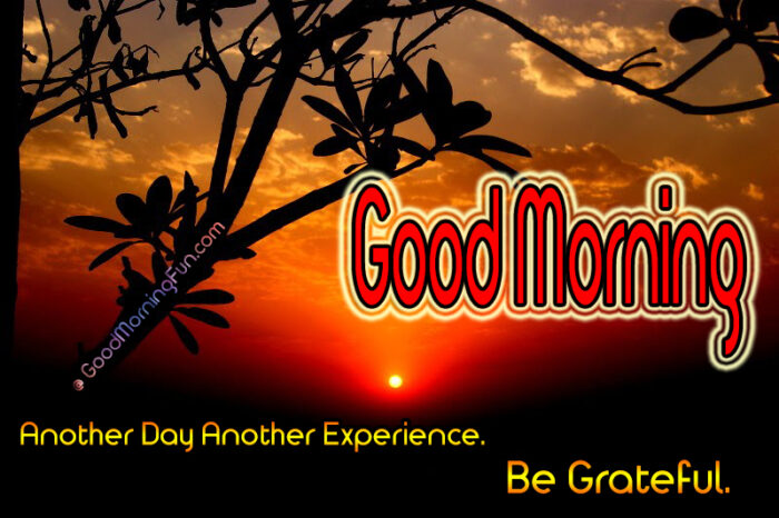 Good Morning Quotes With Sun Rise