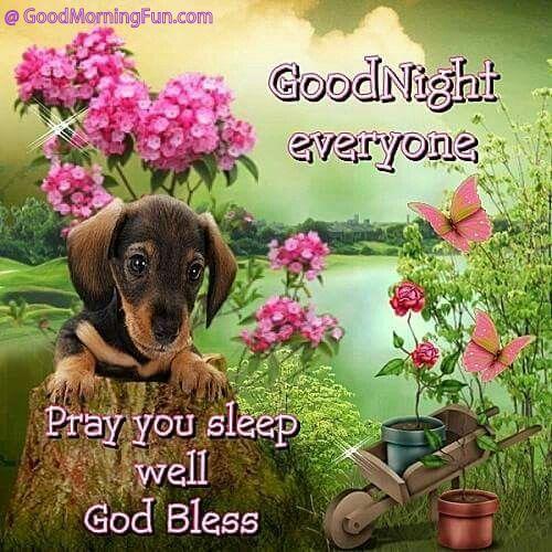 Good Night Pray you sleep well wishes