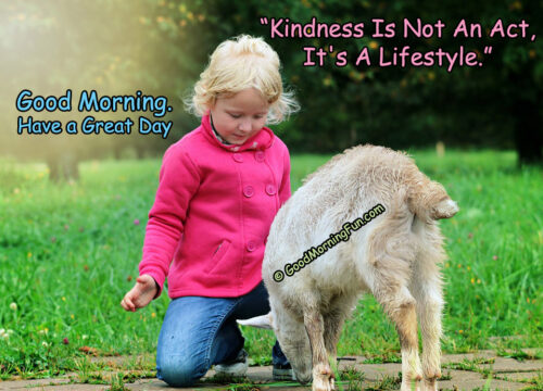 Good Morning Quotes on Kindness - Baby Goat
