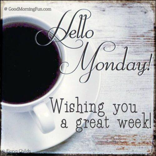 Hello Monday Wishing you a great week ahead