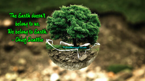 Earth doesn't belongs to us, we belongs to Earth - Mother Earth Quotes