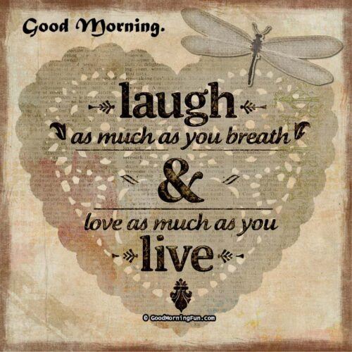 Morning quote on live & laugh