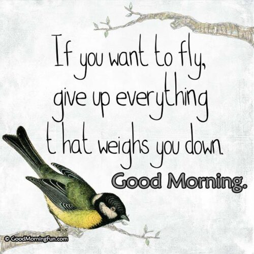Motivational Morning Quotation