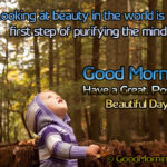 Positive Quote - Looking at beauty in the world is the first step of purifying the mind.