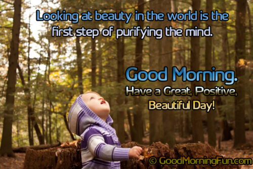 Small child in woods looking up to the sky - Good Morning Quote to be Happy