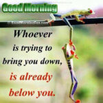 14 Good Morning Inspirational Quotes - Whoever is trying to bring your down is already below you!