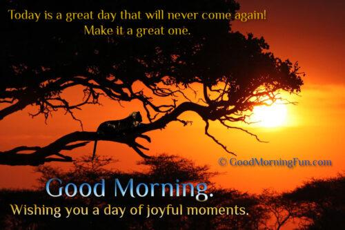 Good Morning. Wishing you a day of joyful moments.