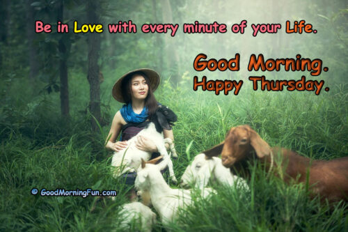 Be in Love - Funny Thursday Quotes