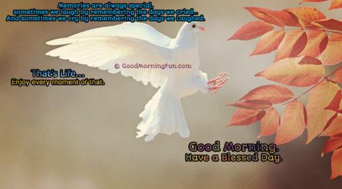 Enjoy Life Memories - Good Morning Wishes