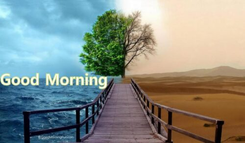 Fantasy-Tree-wallpapers-Beautiful-Scenery - Good Morning