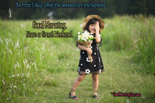 Funny Weekend Quote - Good Morning