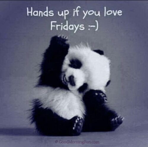 Hands up if u love Fridays - Funny Friday Images