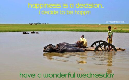 Good Morning Wednesday – Happy Wednesday Images Quotes