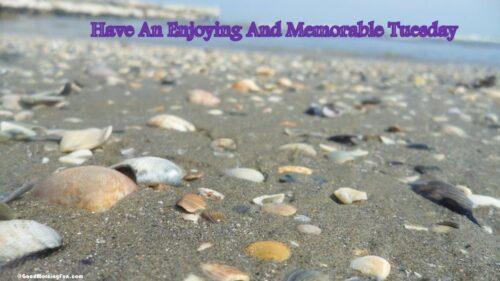 Have An enjoying Memorable Tuesday