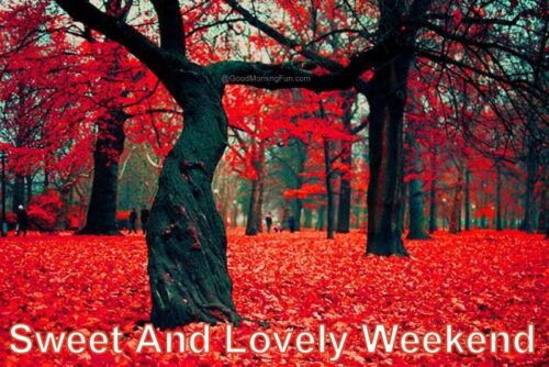 Sweet and lovely weekend