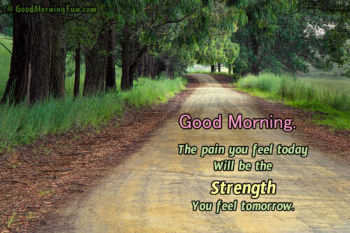 The Pain you feel today will be the success - Success Quotes