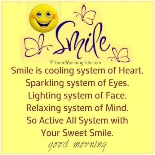 Beautiful Smile Definition Quote - Good Morning