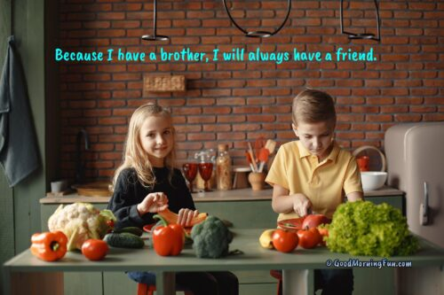 Brother as a best Friend Status Quotes