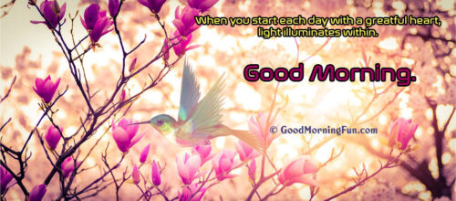 Good Morning Banner Image for Whatsapp Status or Facebook Page