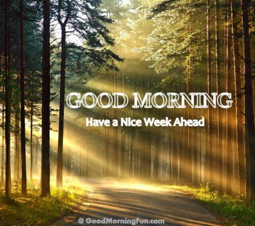 Good Morning - Have a Nice Week Ahead