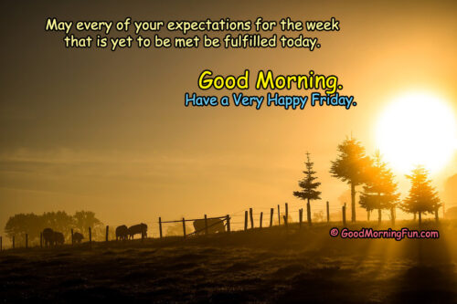 Good Morning - Have a very happy Friday Quotes