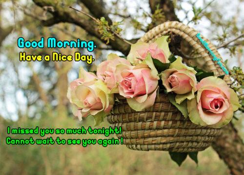 Good Morning Rose Basket
