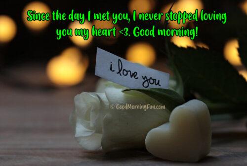 Good Morning Rose I love you