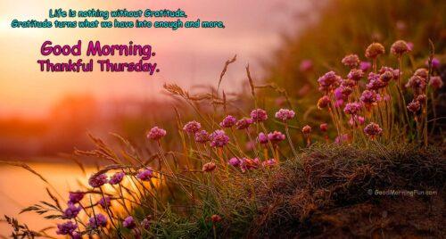 Good Morning Thursday - Gratitude Quotes