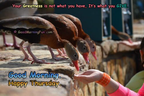 Good Morning Thursday - Greatness Quotes