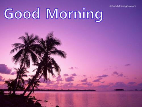 Good morning My Dear friends