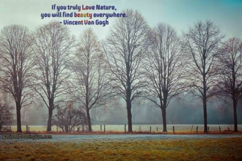 Love Natural Beauty Quotes