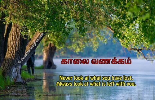 Motivational Good Morning Quotes in Tamil