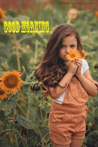 Pretty Girl holding orange color sunflower - Good Morning