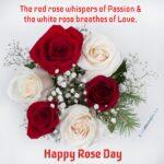 Happy Rose Day 2020 Quotes & Status