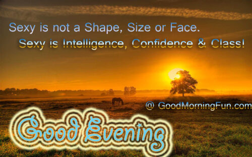 Sexy Good Evening Quotes