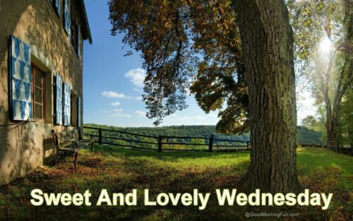 Sweet And Lovely Wednesday