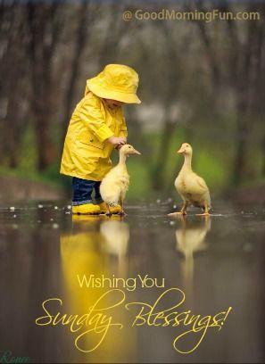 Wishing you Sunday Blessings