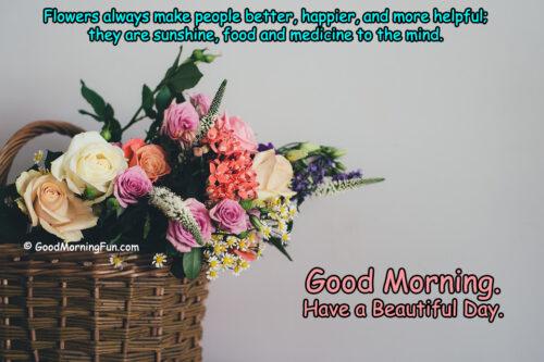 Beautiful Good Morning Roses