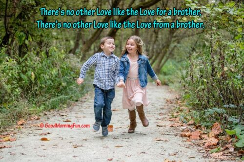 Brother and Sister Love Quote