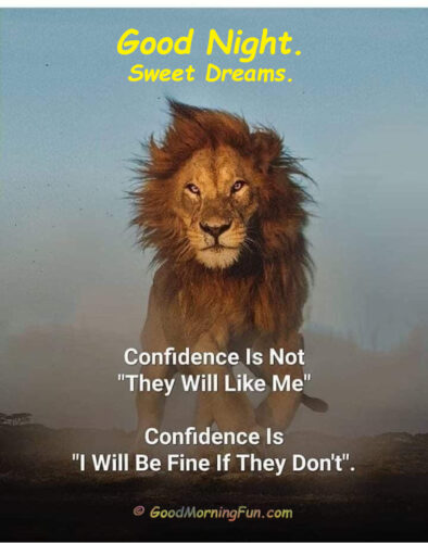 Confidence - Inspirational Good Night Quote