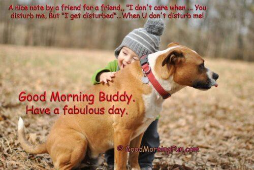 Cute disturb me friendship quote