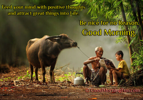Feed your mind with positive thoughts good morning quote - village buffalo